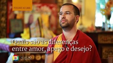 Quais são as diferenças entre amor, apego e desejo?