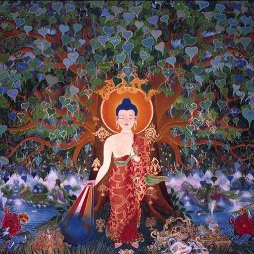 Il Karma, insegnamenti di buddhismo tibetano di Lama Michel Rinpoche