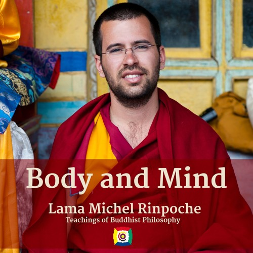 The Relation Between Body and Mind