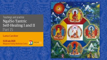 Self-Healing 1& 2 Summer Course  - Reading and Reflections with Lama Caroline - part 15 (EN-IT)
